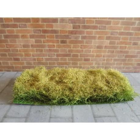 Bande herbe sèche