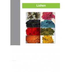 Sachet lichen 500Gr, BLEU