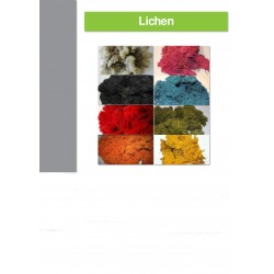Sachet lichen 500Gr, CITRON VERT