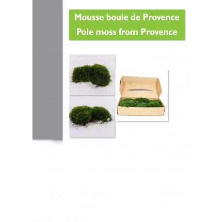 Boite de boules de mousse de Provence 1 kilo