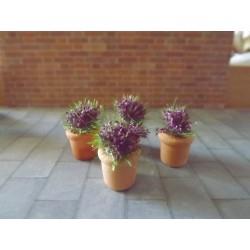 Lavande en pot (1,5cm de haut sans les fleurs)