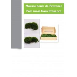 Boite de boules de mousse de Provence