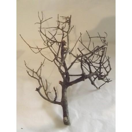 Branchage naturel  pour création d'arbre environ 18/20cm de haut