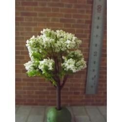 Arbre fleuri blanc